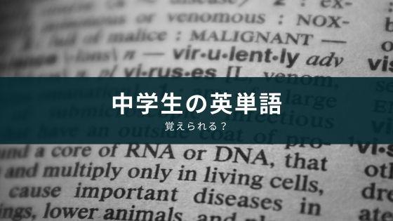 【中学生向け】英単語帳の選び方とアプリを使った覚え方